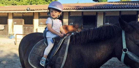 Baby poney & anniversaires